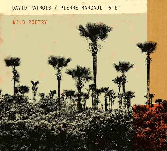 David Patrois Pierre Marcault 5tet Wild Poetry